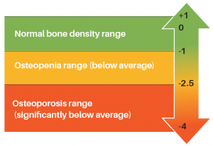 t-score-bone-health